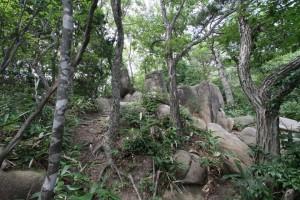 ラクダに似たスフィンクス岩