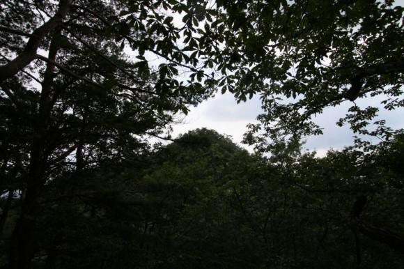 鬼叫山から見た葦嶽山