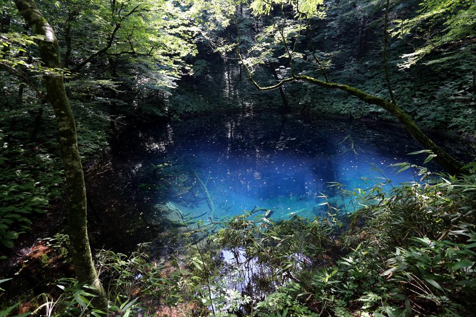 神秘の湖「青池」