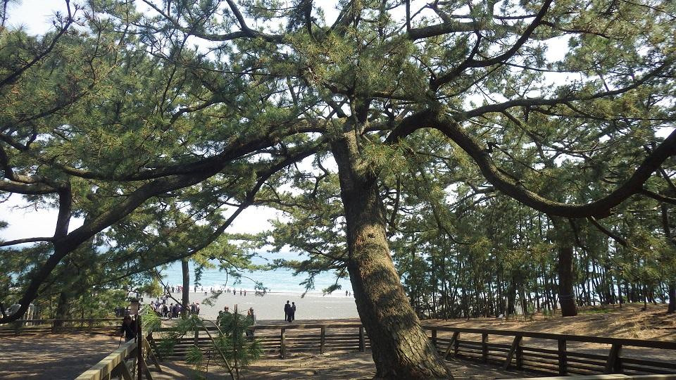 羽衣伝説と御穂神社