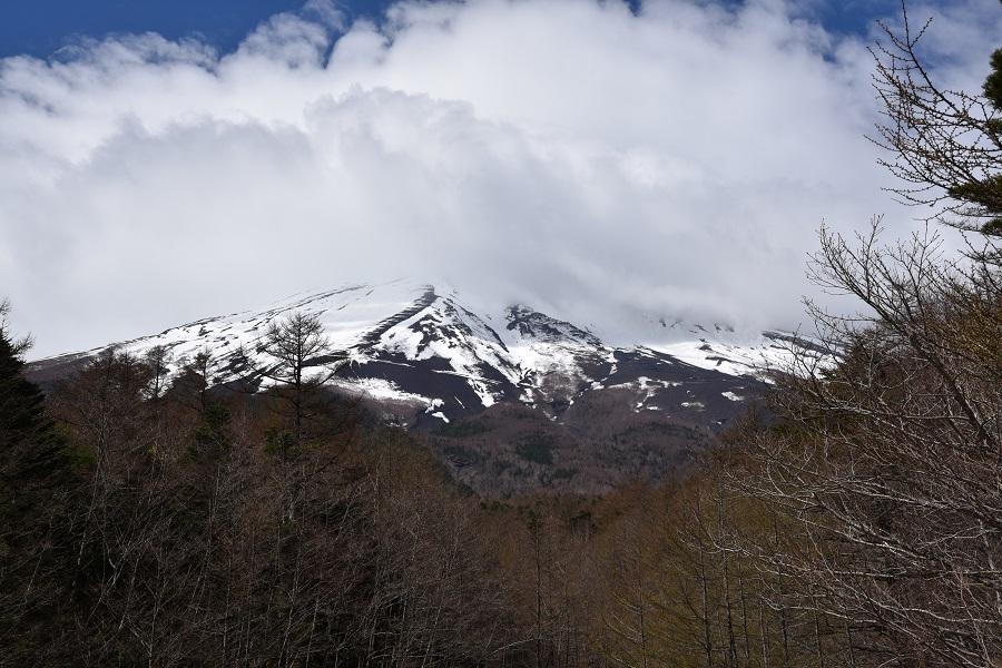 富士山と不死 謎の宮下文書